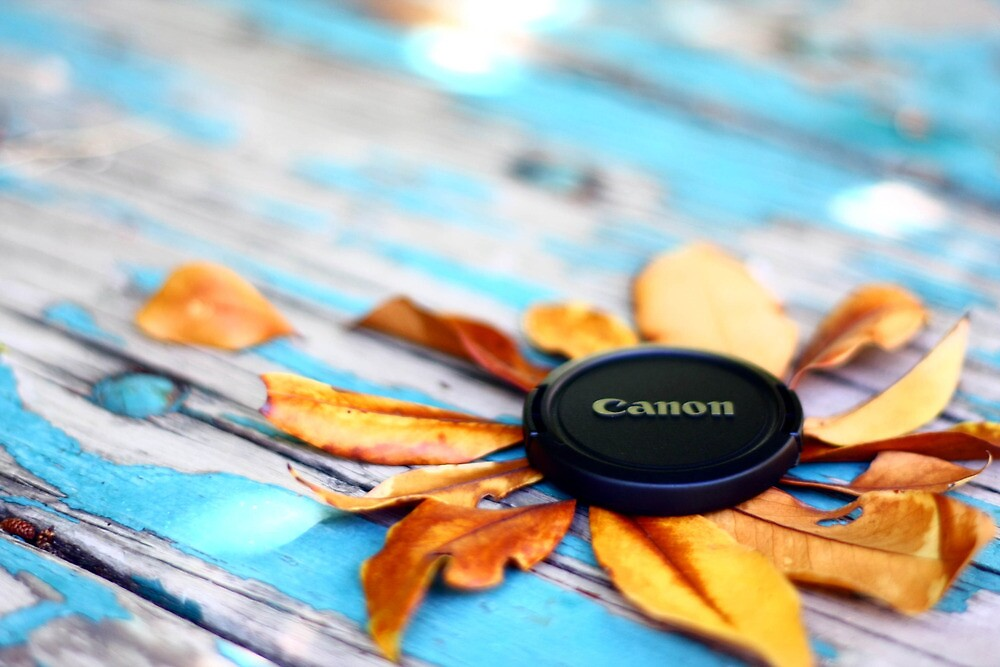 Canon by Alexander Standke