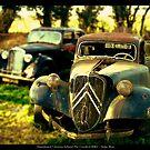 Abandoned Citroen Cars by newshamwest