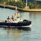 Svitzer Maitland Tug - Newcastle Harbour NSW Australia by Phil Woodman