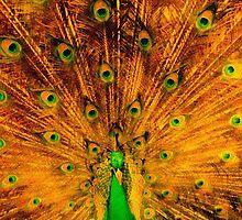 Zabrina's 'Peacock Oriental Sun Burst' by Art 4 ME