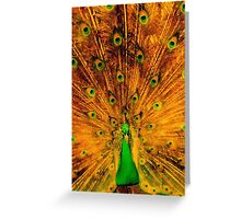 Zabrina's 'Peacock Oriental Sun Burst' Greeting Card