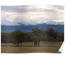 Misty hills of Bundarra Poster