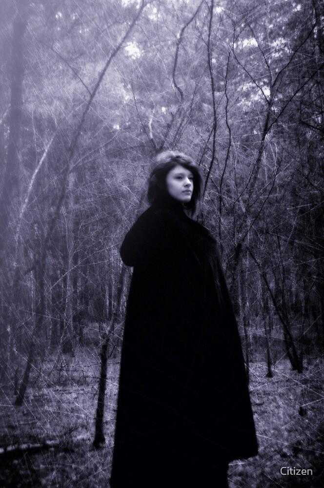 Violet by Nikki Smith