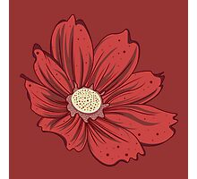 Reddish Flower Photographic Print