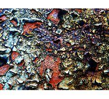 Paint or lichen??  Photographic Print