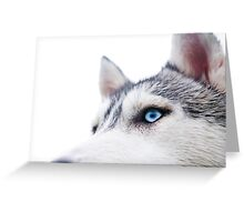 Husky Blue Greeting Card