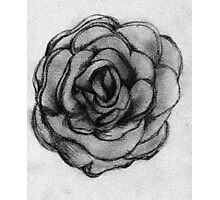 Charcoal Rose Photographic Print