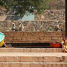 Chittorgarh Vendors, Rajasthan, India by RIYAZ POCKETWALA