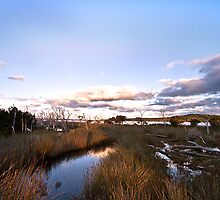 Inlet Dusk 2011 by pennyswork