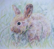 Bunny by Anastasia Zabrodina