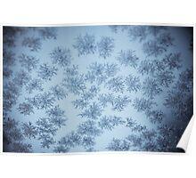 Snowflakes on windshield- selenium edit Poster