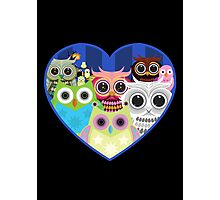 Love Owls 2 (Black) Photographic Print