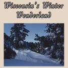 Wisconsins Winter Wonderland Tee by KatsEye