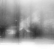 The Foggy Day After Snowstorm by Mukesh Srivastava
