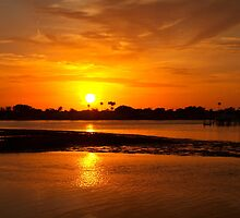 Bright gold sunset by ♥⊱ B. Randi Bailey