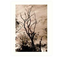 eerie tree Art Print