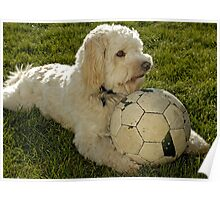 """Teddy"" with football. Poster"