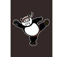 Martial Arts Panda 2 - Brown Photographic Print