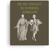 Be My Knight in shining Armour Canvas Print
