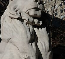 Lion, library, new york by bee1331