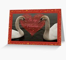 Two Young Swans - Valentine Greeting Card