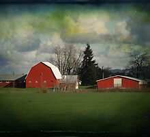 Red Barns by aussiedi