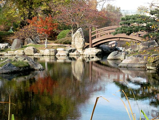 Japanese Garden, Jackson Park , Chicago by Erica Lipper