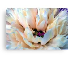 Floral Abstract 1 Canvas Print