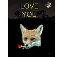 Eftalou Fox Max with rose LOVE YOU Photographic Print