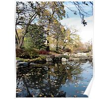 Leaves on Pond, Japanese Garden, Jackson Park Chicago Poster