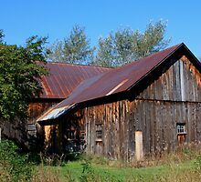 Barn on a Blue Sky Day by Renee Blake