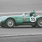 Jaguar C Type (Webb) by Willie Jackson