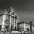 The Liver Building and Cunard Building  Liverpool by larry flewers