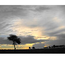 Lonely African tree Photographic Print