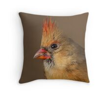 Female Nothern Cardinal portrait Throw Pillow