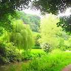Weeping Willow of Wales by maashu