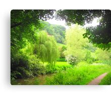 Weeping Willow of Wales Canvas Print