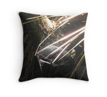 Silver Cobweb Praslin island Throw Pillow