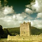 Narrow Water Castle by Stephen Maxwell