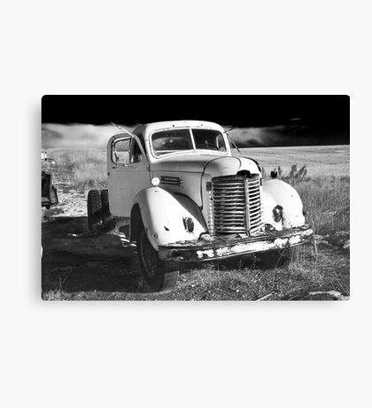 International Monochrome Canvas Print
