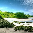 Whananaki South Beach. by Roy  Massicks