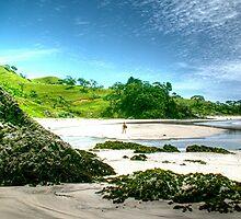 Whananaki South Beach. by Roy  Massicks