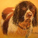 Wet Spaniel by Hilary Robinson