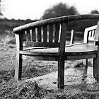 Sit down, relax, enjoy by Martyn Franklin
