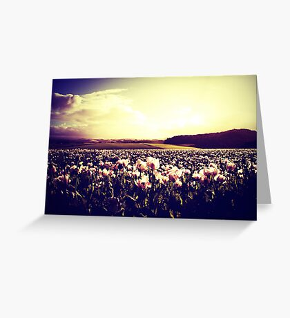 There are more things in heaven and earth, Horatio Greeting Card