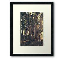 A Light Shining Through Framed Print