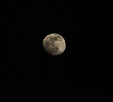 The moon tonight 11-17-2010 by DonnaMoore