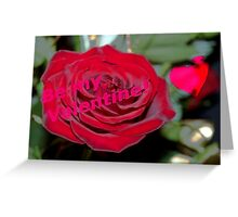 Velvety rose valentine card Greeting Card