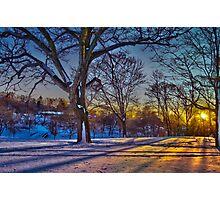 Winter Light  Photographic Print