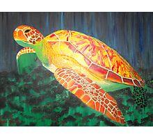 Sea turtle within rays of sunshine Photographic Print